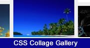 css collage gallery